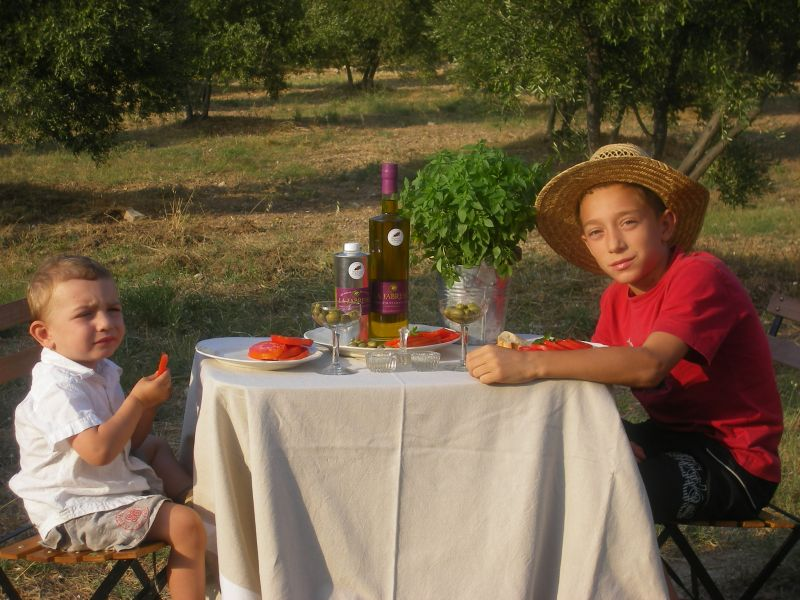 oliveraieslafabresse27aout2008150.jpg
